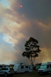 Bushfire near Traralgon