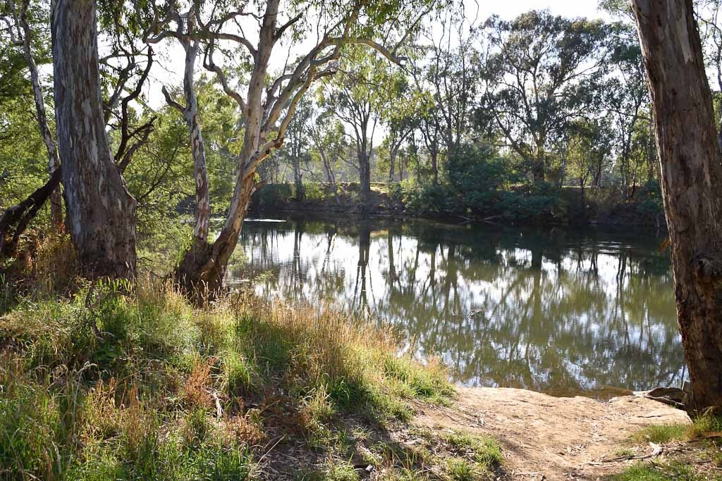 Goulburn River at Seymour