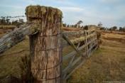 Cradle Mtn gate