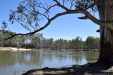 2. Grantham's Bend, Murray River