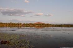 Lily Creek Lagoon & Sleeping Buddha