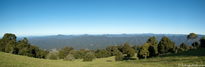 Griffiths Lookout Dorrigo