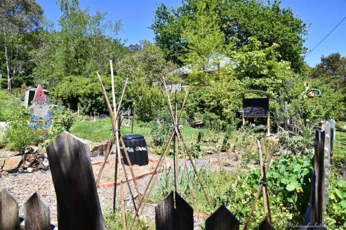 The Warburton community garden