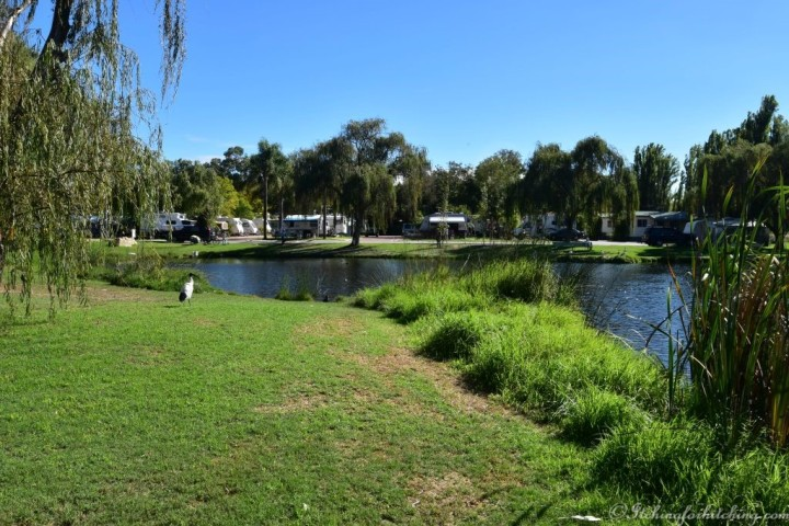 Karrinyup Waters 1